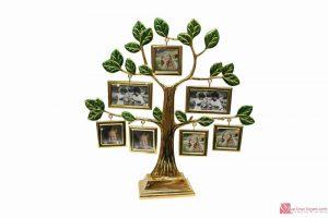 khung ảnh ký ức hình cây
